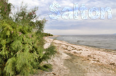 Salton Shores ! (James Whorriskey (Delbert Jackson)) Tags: california uk ireland sea fish mountains river catchycolors dead la photo earthquake photographer desert palmsprings picture eerie photograph londonderry level fault northernireland below shores accidental idyllic derry largest sanandreas 1905 ulster salton postapocalyptic imperialvalley impressionsexpressions aroundus jameswhorriskey delbertjackson jameswhoriskey jameswhorriskeyphotography coloradodesertworlds