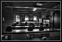 BodegaBay_0275d (bjarne.winkler) Tags: california coast marine classroom laboratory bodega northern at