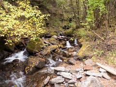 P1460104.jpg (Rambalac) Tags: mountains water japan forest river nagano chino      lumixgh4