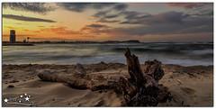 High & Dry (Brett Huch Photography) Tags: ocean sunset sea sky seascape beach nature water log surf waves seascapes australia qld queensland aussie currumbin goldcoast thealley
