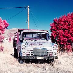 [Desuetude] (uderaglassbell) Tags: abandoned 120 6x6 truck mediumformat slidefilm greece infrared vehicle expired e6 rodos rhodes planar 80mm eir 099 colourinfrared aerochrome underaglassbell hasselblad203fe hasselbladv cfe2880 aerochromecolor carlzeiss80mmplanarf28cfe destuetude