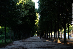 2014-08-18 19.23.30 (The diary of Blue Shoes!) Tags: park street old bridge trees windows sunset summer sky people sun house paris france art cars church monument nature water architecture clouds buildings french c