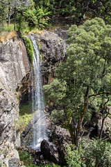 Preston Waterfall