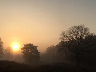 April morning walk (3)