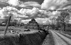 Track and bales dry in the spring sunshine in La Seiglerie (jimmedia) Tags: france french farm land bales spring tract farmhouse sky black white