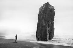 The rock - D8C_9606c (Viggo Johansen) Tags: rock sea beach iceland waves fog