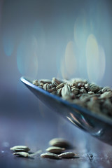 The Fennel Countdown. (Neal.) Tags: macromondays fennel seed seeds macro canon 100mm f28 11600 iso400 scotland spoon reflection bokeh light dark wife cooking