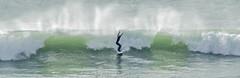 Mains en l'air (nolyaphotographies) Tags: crozon morgat finistere bretagne france nikon monde europe wave surf surfing mer sea iroise rade brest storm blue sport long board landscape seascape