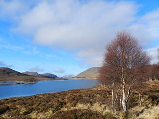 Loch Droma, Highlands of Scotland, Feb 2017