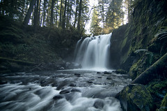 Majestic Falls (gwendolyn.allsop) Tags: mcdowell creek falls county park majestic waterfall spring water long exposure moss pnw oregon hike d5200