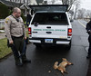 foxinbristol-BR-040717_7282 (newspaper_guy Mike Orazzi) Tags: fox federalhill bristol animalcontrol rabies 18200mmf3556gvr d500