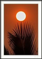 Sr Sol (J. Amorin) Tags: atardeceres lugares varios macuspana tabascomexico sol sun sileil amorin