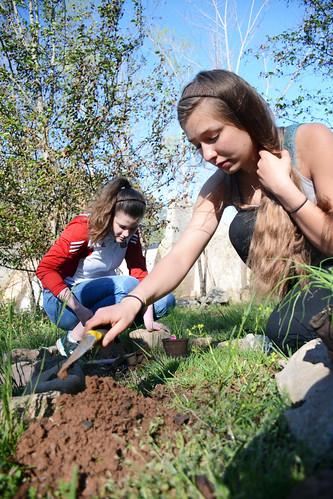 SOUL Garden Work Day