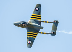 de Havilland Vampire Top View (4myrrh1) Tags: maxwell afb al alabama aircraft airplane aviation airshow airplanes airport canon 7dii ef100400l