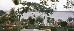 Lago Ypacaraí (rrodriguez16) Tags: rarb1950 analog film 35mm voigtländer bessamatic colorskopar 50mmf28 kodak ektachrome lago lake ypacaraí san bernardino paraguay flores flowers jardin garden