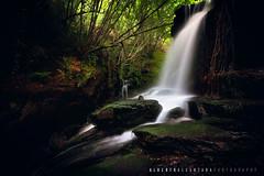 Cascada del Río Eifonso (aALCÁNTARA) Tags: españa eifonso naturaleza paisaje vigo rios galicia cascada ngc