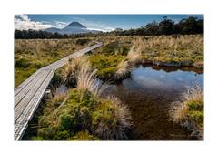 Mount Ngauruhoe Tarn - New Zealand (dominicscottphotography.com) Tags: volcano volcanic tarn mountruapehu mountngauruhoe newzealand silicarapids sony ilce7rm2 a7rm2 a7rmii sel1635z dominicscott