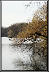 just nature... (Ismail - humanistic misanthrope ツ) Tags: berlin plötzensee landschaft landscape nature natur braceyourself summeriscoming photographer must always work with greatest respect for his subject terms own point henri cartierbresson