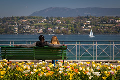 Geneva Love Story (dommmmh89) Tags: geneva love spring lake flowers lovers boat sailing bench lac leman parc perle du genève suisse switzerland