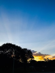 Sunset (p.mamede) Tags: brasil brésil brazil brasília вечер dusk المساء 黃昏 abendzeit ocaso coucherdusoleil 日落 غروب sonnenuntergang entardecer pôrdosol tombéedujour ombres sunset sunshine