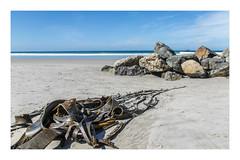 47/100: On the beach (judi may) Tags: newzealand dunedin stclairebeach seaweed rocks sea sand ocean 100xthe2017edition 100x2017 image47100 canon7d blue textures