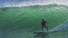 Surfing Burleigh #395 (BAN - photography) Tags: wave sea surfer ocean surfboard bureighheads d500 swell