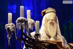 . (Ellie Boskett) Tags: harrypotter prisonerofazkaban gobletoffire dumbledore halfbloodprince philosophersstone orderofthephoenix darkarts chamberofsecrets warnerbrothersstudiotour wbstudiotour deathlyhallows