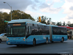 Viva #7204 (vb5215's Transportation Gallery) Tags: york transit van region viva 2007 hool yrt ag300