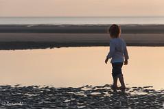 DSC_2639web (beran78) Tags: sable enfants plage katell contrejour nord coucherdesoleil hardelot 2014