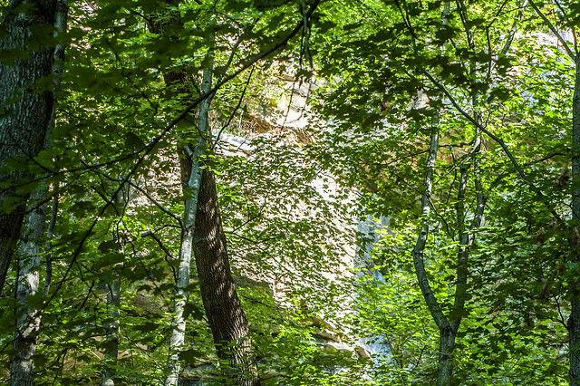 O'Bannon Woods State Park - September 27, 2014