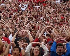 University of Arkansas Football vs Nichols State University (Garagewerks) Tags: college sport football university all state bigma sony sigma arkansas vs fans sec fayetteville nichols razorbacks 2014 50500mm f4563 slta77v
