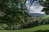 "Glen Fiddich (M J Robinson Photography) Tags: river landscape photography scotland nikon glen moray glenfiddich fiddich auchindoun riverfiddich auchindouncastle d5100 ""nikond5100"""