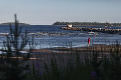 028A3640 (Byskan) Tags: sea summer river coast sweden july baltic resort sverige juli hav sommar kust havsbad byske byskelven bottenhavet byskanse byskan