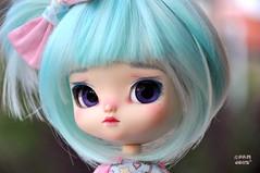 Mint (♥PAM♥dolls♥) Tags: cute doll dolls sweet pullip pamdolls yeolume