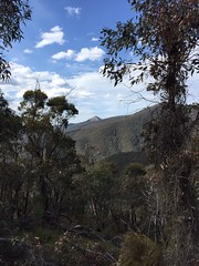 mt coree from gentle annie trail (Seakayem) Tags: mountains bush cellphone mobilephone outback coree iphone brindabella gentleannie mtcoree brindies brindabellanationalpark mountcoree iphone6 fleacreek gentleannietrail