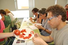Degustación tomate ecológico puntdesabor 14