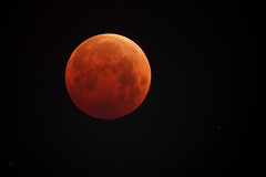 Blood Moon  10/8/14 (zAmb0ni) Tags: moon eclipse blood lunar