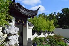 National Bonsai and Penjing Museum (pjpink) Tags: summer museum washingtondc dc washington arboretum september bonsai 2014 nationalarboretum penjing pjpink