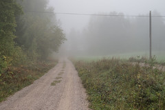 Foggy road (Storkholm Photography) Tags: road morning autumn mist green fall nature fog landscape 50mm countryside nikon power sweden line cosy mystic 50mmf14 sörmland d610 mariefred södermanland