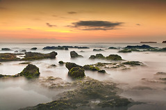 There IS life out there! (Nomadic-Imagery) Tags: longexposure sunset bali mist seascape water clouds indonesia landscape coast rocks dusk rocky algae vapour goldenhour seas nationalgeographic headland vle canoneos5dmark2
