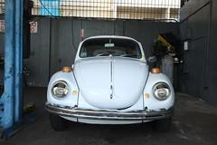 DSCF0081 (waldy5897) Tags: classic vw volkswagen puertorico beetle fujifilm clasico bayamon xe1 volky xf1855