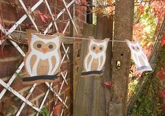 Snowy Owl Bunting/Garland Halloween/Christmas (cowdogdesign) Tags: halloween print handmade parties garland owl bunting rustictrickortreat