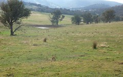Lot 5 Altmeier Lane, Splitters Creek NSW