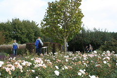 "Excursie Materialisatie 1e jaar • <a style=""font-size:0.8em;"" href=""http://www.flickr.com/photos/99047638@N03/15418723315/"" target=""_blank"">View on Flickr</a>"
