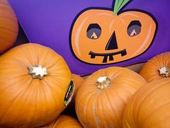 pumpkins for sale 01 oct 14 (Shaun the grime lover) Tags: halloween fruit pumpkin october pumpkins squash challenge
