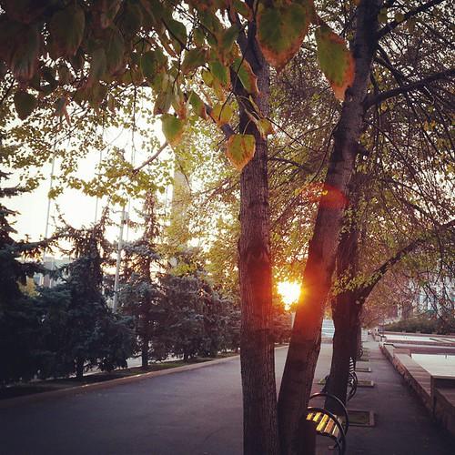 Вечерняя #Almaty