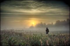 Within The Landscape (Frukostklubben) Tags: morning cloud mist sunrise 35mm landscape sweden sony foggy sverige fe za f28 soluppgng fogg morgon landskap dimma mlndal moln lindome hllesker a7r fotografera landscapesdreams ilce7r