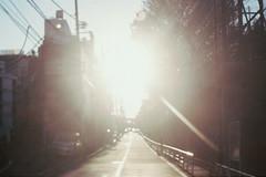 (people breathing in Tokyo) Tags: tokyo street mooning light