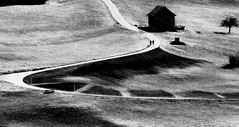 "Walking Man Love. Nr. XI ""path of life"" (Swiss.Piton (BH&SC)) Tags: walkingman wanderung ostschweiz olympusomdem5miizuikom75mmf18 zuikolenses olympus75mmf18microfourthirdslens blackandwhite schweizerphotographen schweiz schwarzundweiss ibringmycameraeverywhere ilovephotografie microfourthird swissamateurphotographers swiss walkingmanlandscape 032017"