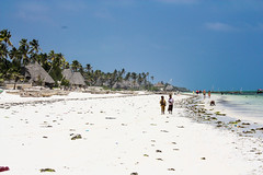 Zanzibar (adriennemurraynielsen) Tags: zanzibar tanzania spice island beaches africa indianocean sea beach coastline whitesand exotic travel adventure explore